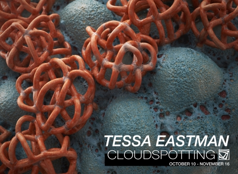 Tessa Eastman Cloudspotting at Jason Jacques Gallery exhibition brochure cover